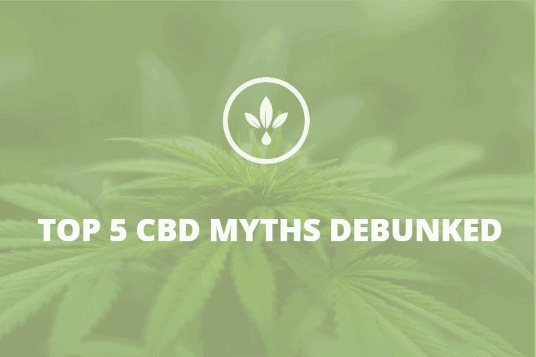 top 5 myths of CBD
