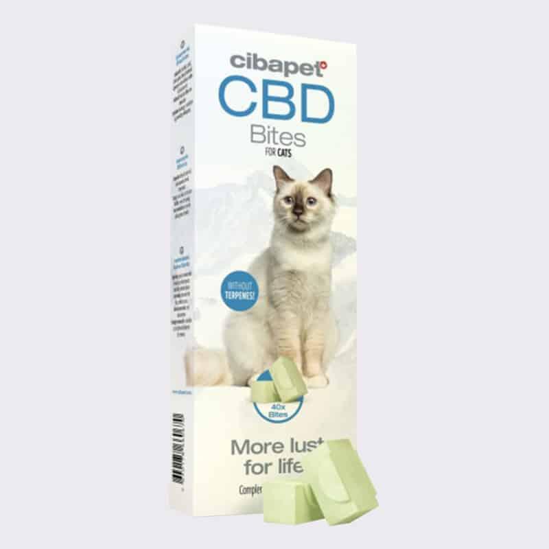 CBD Bites for Cats
