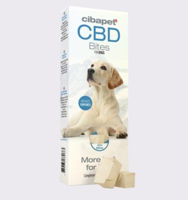 cbdbites for dogs 1